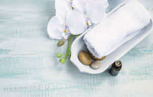 Aqua Vitae Day Spa Port Macquarie - Other Beauty Therapy